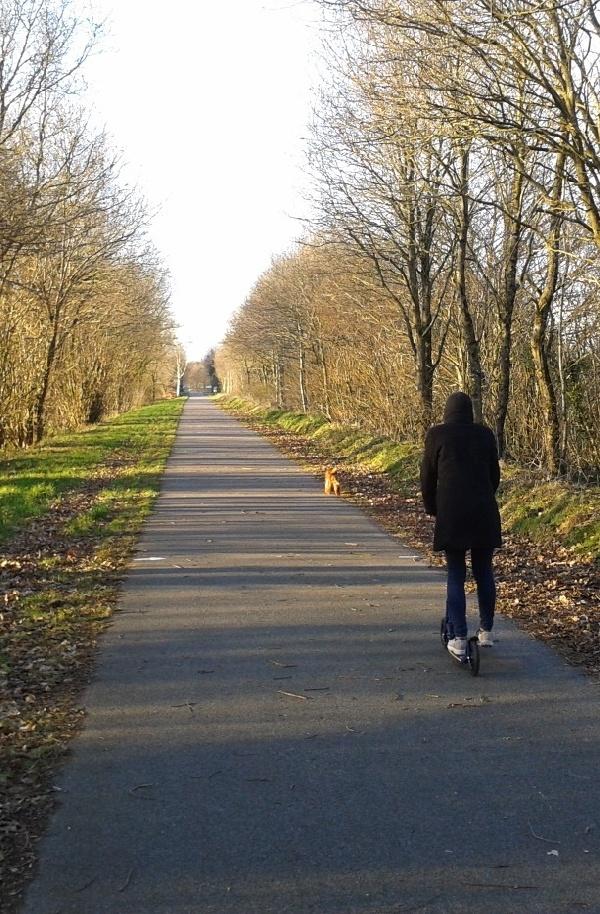 Promenade au calme sur la voie verte